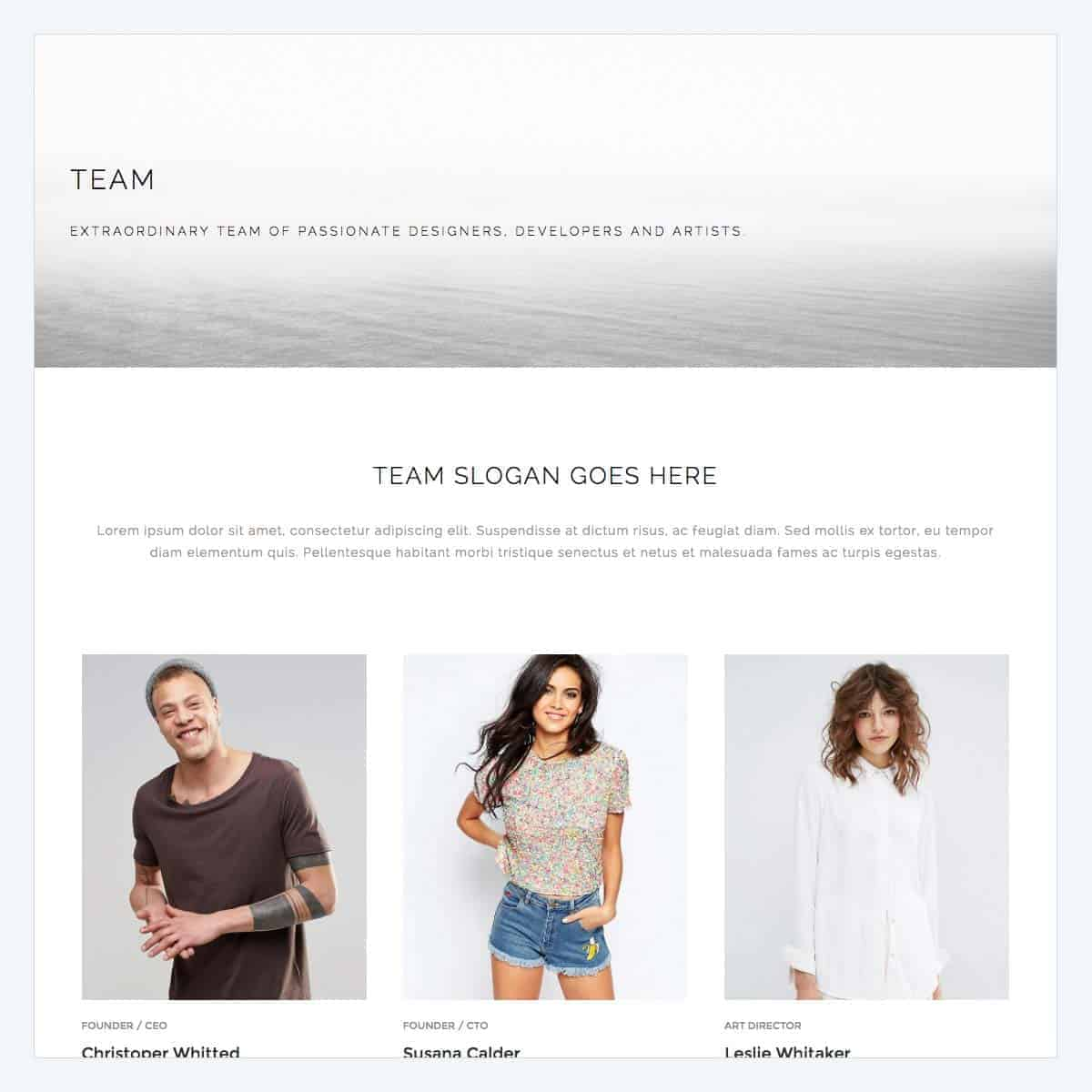 team-page-2-template